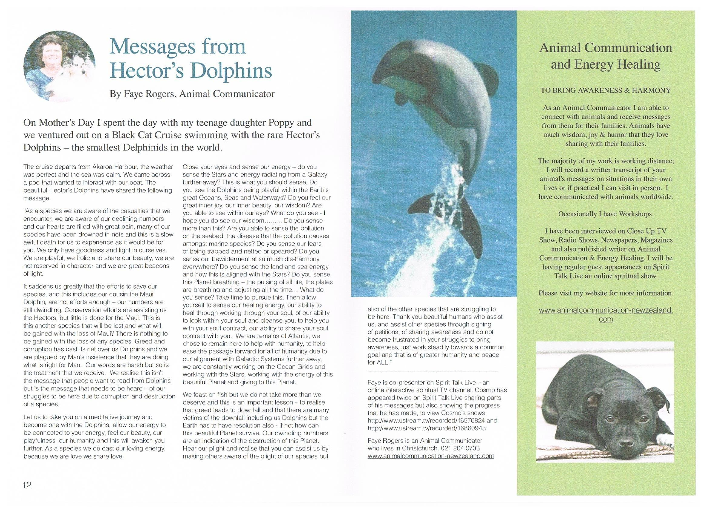 magazine articles or reviews approximately dolphins