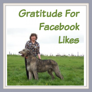 gratitude for facebook likes Faye Rogers Animal Communication