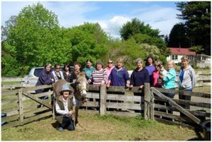 Waikato workshop attendees - Pumpkin Donkey & Magic Fox Terrier!!!